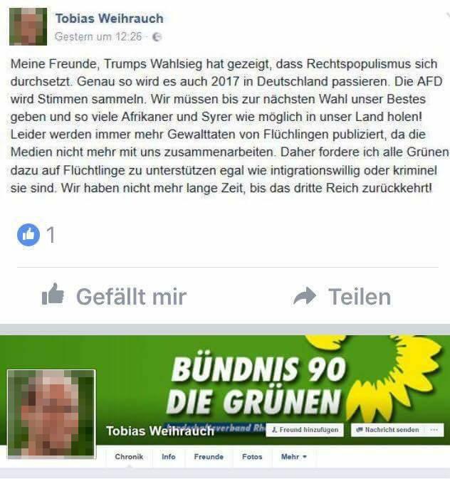Der Beitrag des erfundenen Grünen-Mitglieds